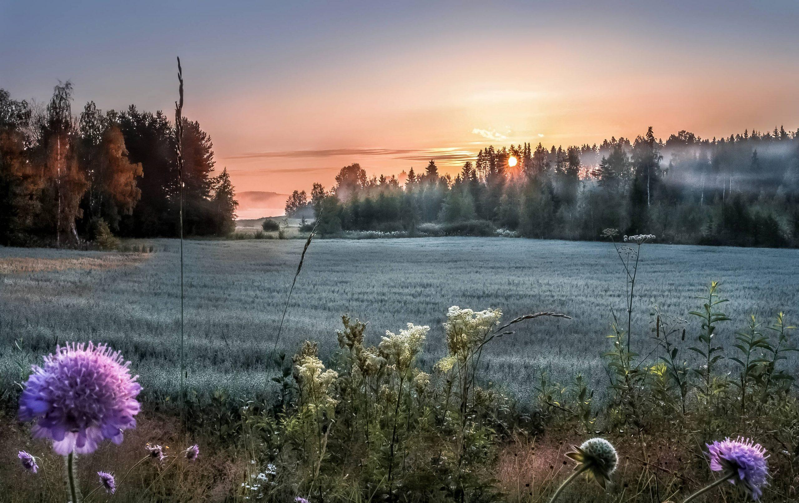 Visit Finland Julia Kivelä
